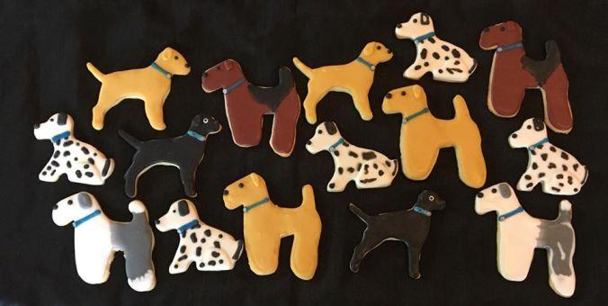 Dog Variety